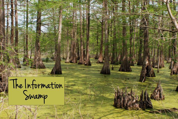 Information swamp